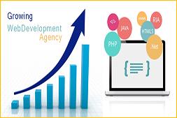 为什么ibrandox在Web开发行业中快速增长