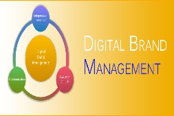 الرقمية العلامة التجارية الإدارة مع ibrandox