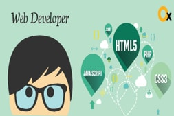 why-a-website-does-needs-a-website-developer