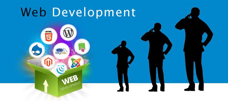 क्यों-अनुकूलित-वेबसाइट विकास-है-चाहिए-के लिए-your-business