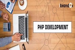 what-makes-ibrandox-best-php-web-development-company