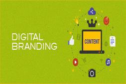 独特的内容如何帮助网站建立数字品牌