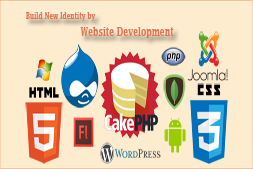 ibrandox-website-development-company-in-india