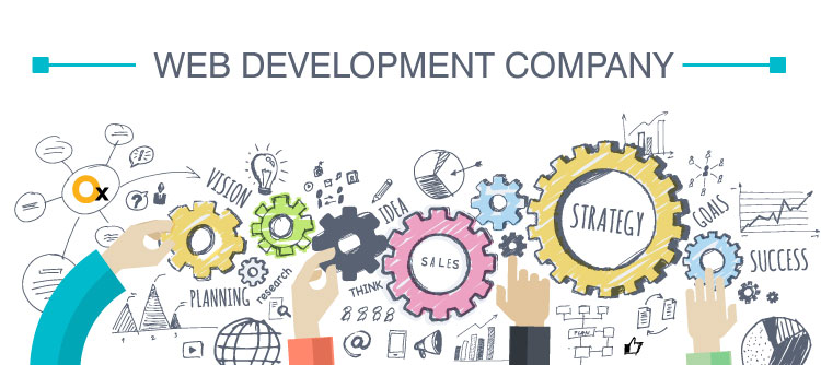 what-makes-a-web-development-company-complete