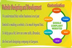 なぜあなたが雇うべきであるか、ibrandox-for-your-online-project