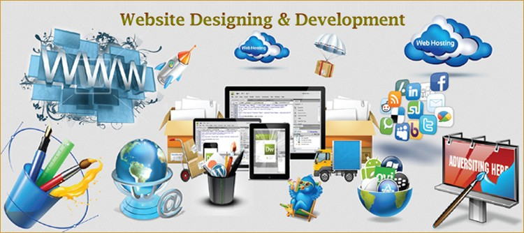 difference-between-website-designing-and-web-development-ibrandox