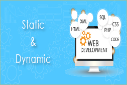 difference-between-static-and-dynamic-website-development