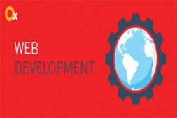 principles-of-website-development-to-obtain-an-effective-website