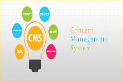 advantages-of-cms-in-website-development
