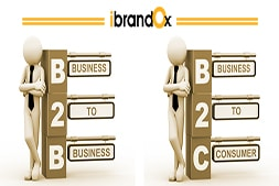 what-is-b2b-and-b2c-website-which-website-should-i-go-for
