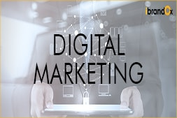 no-results-no-pay-to-ibrandox-result-driven-digital-marketing-agency