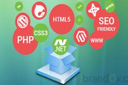 веб-разработка-компания-в-Гургаоне