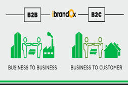 what-is-difference-between-b2b-and-b2c-website