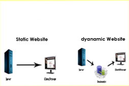 static-website-design-versus-dynamic-website-design