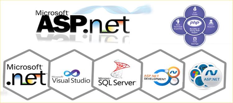 php-प्रोग्रामिंग और एएसपी-डॉट नेट प्रोग्रामिंग-वेबसाइट विकास
