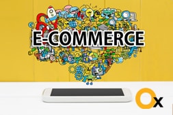 what-are-the-crucial-factors-of-e-commerce-website-design