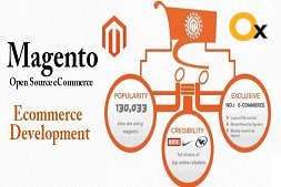 why-it-is-advisable-to-hire-top-magento-developers-for-your-website