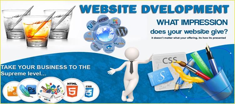 کاروبار میں پیشہ ور ویب سائٹ کے ترقیاتی فوائد