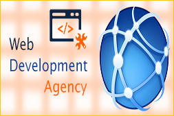 top-5-quests-to-ask-you-you-hi-re-a-web-development-agency