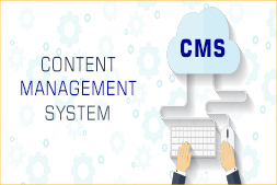role-of-cms-in-website-development