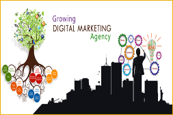ibrandox-growing-digital-marketing-agency-in-gurgaon