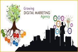 ibrandox النمو الرقمي والتسويق وكالة في وجورجاون